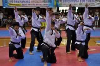 Тхэквандо в Республике Корея